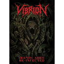 VIBRION - Buenos Aires Re-Infected (DVD)